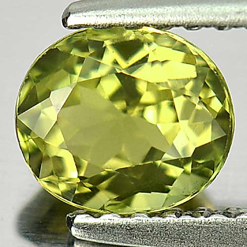 Charming Gem 0.82 Ct. Oval Shape Natural Green Tourmaline Nigeria