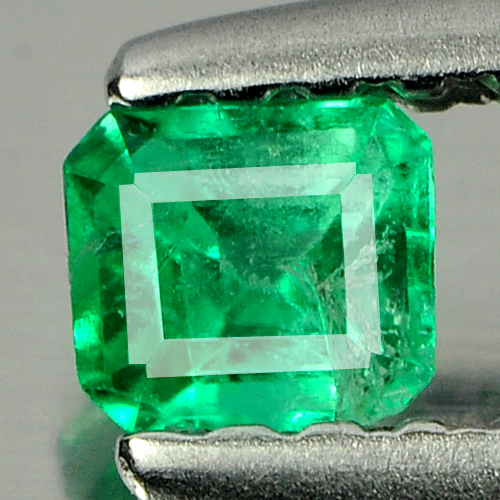 0.18 Ct. Octagon Natural Rich Green Emerald Unheated